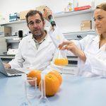 La ultracongelación de los zumos de naranja puede aumentar la absorción de compuestos beneficiosos para la salud – US