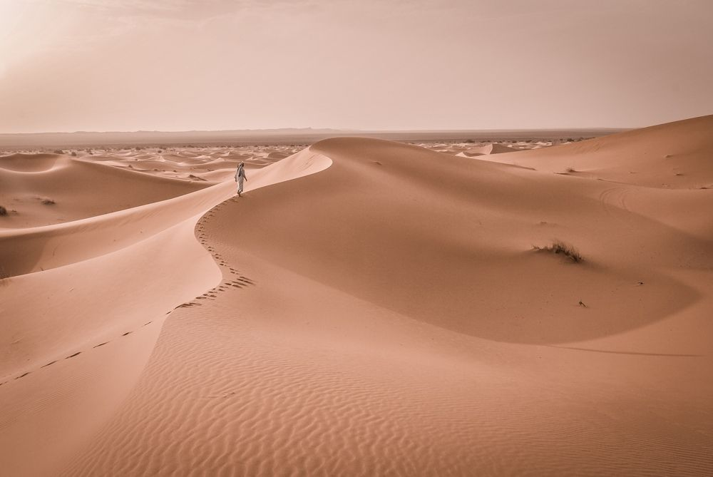 """Un artículo sobre cambio climático histórico describe un """"atenuado"""" desierto del Sáhara entre 1882 y 1890 - ULL"""