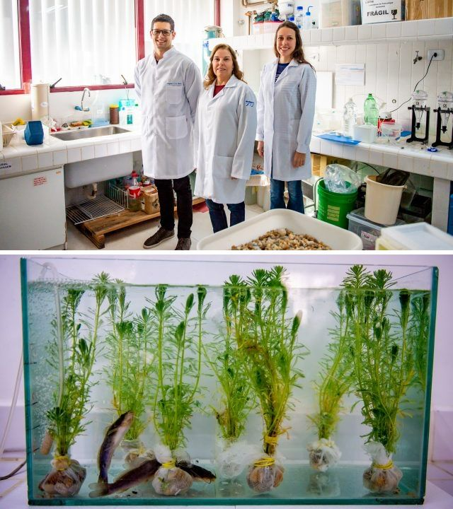 UFPR busca solução para tratamento de novos contaminantes das águas