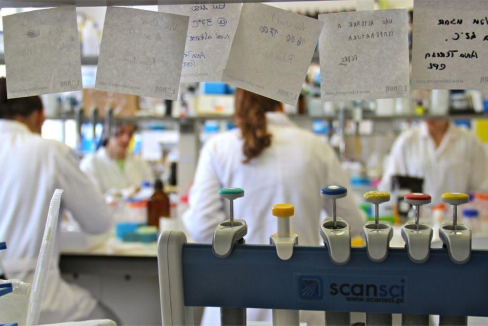 UC abre candidaturas para mais de 70 bolsas de iniciação à investigação científica e tecnológica