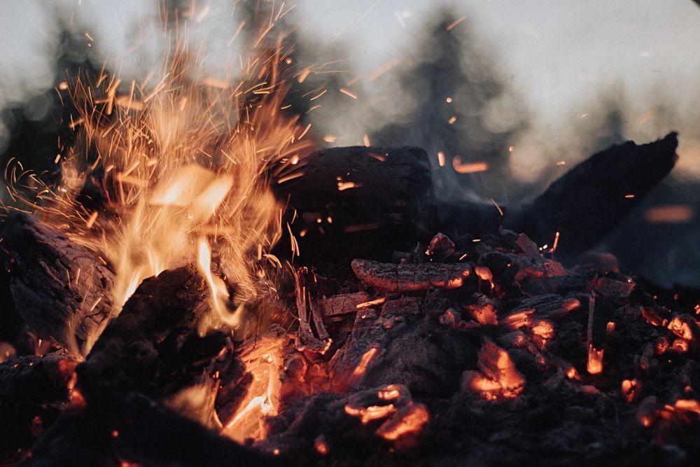 Estudo analisa impacto de incêndios nos ecossistemas brasileiros - UFSCAR